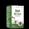 Ocean Milk Thistle